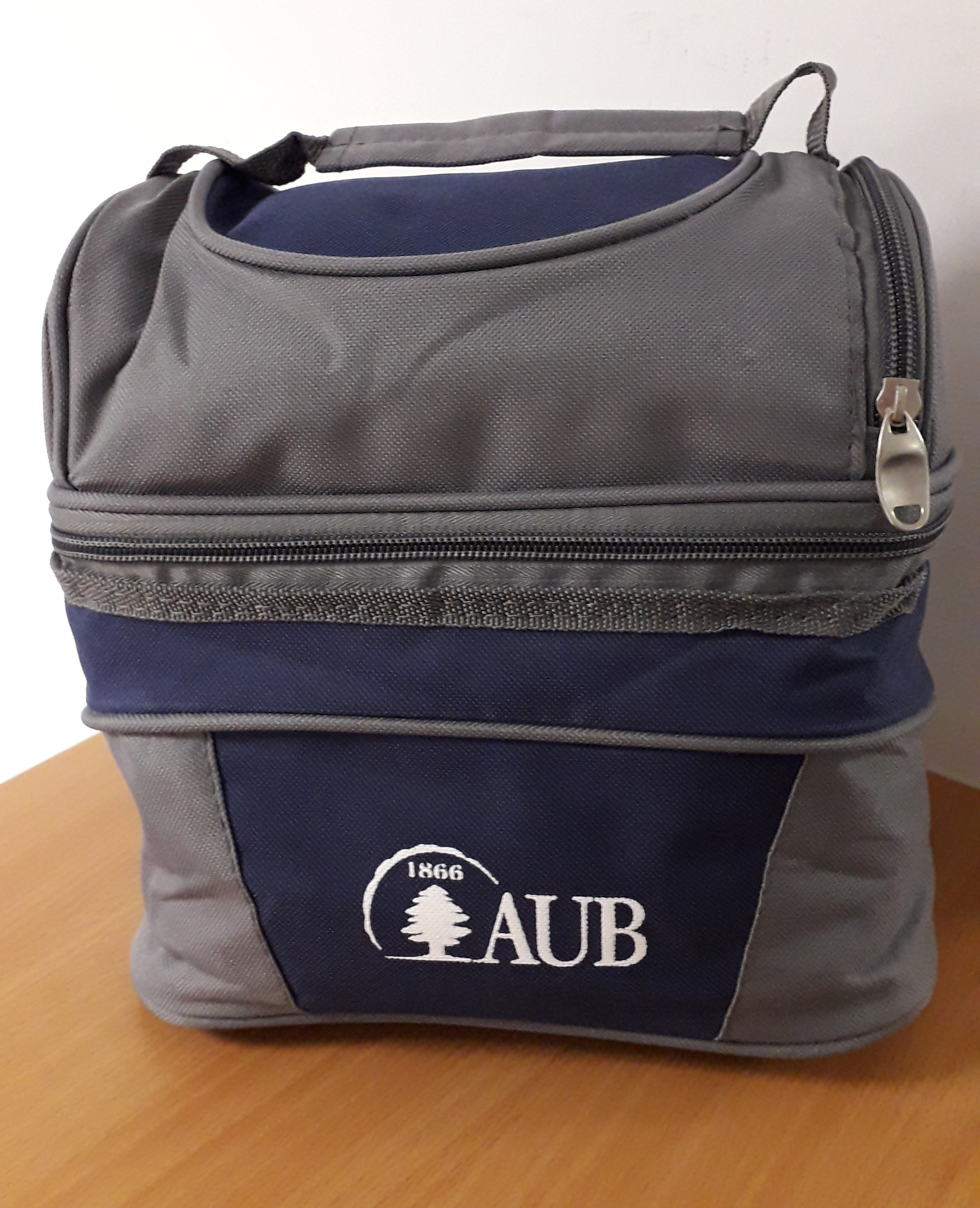AUB COOLER BAG 2 COMPARTMENTS (L.B/GY, LI/GY, RD/GY, BL/GY)