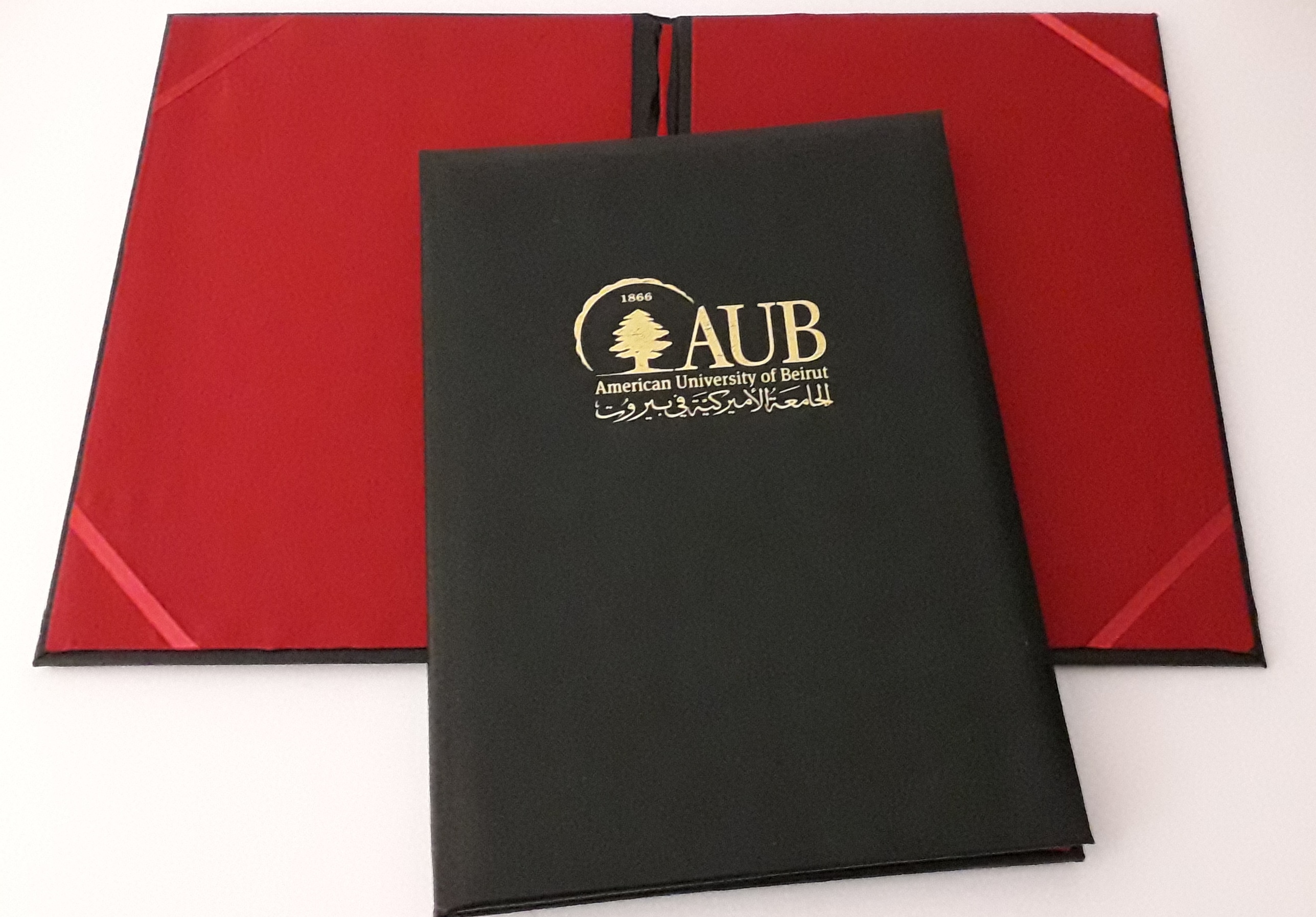 AUB LEATHER CERTIFICATE