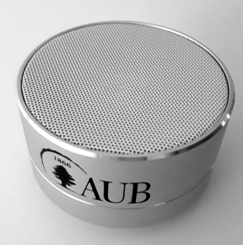 Bluetooth Speaker 010 Silver