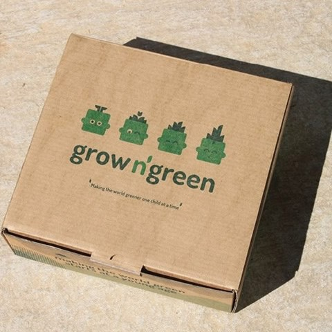 Grow N' Green Sand Box