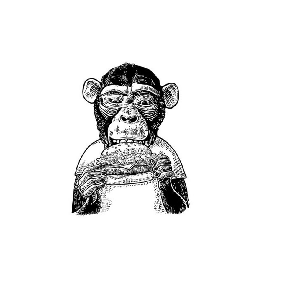 Three Monkeys Concepts , Tmc Speak Sticker