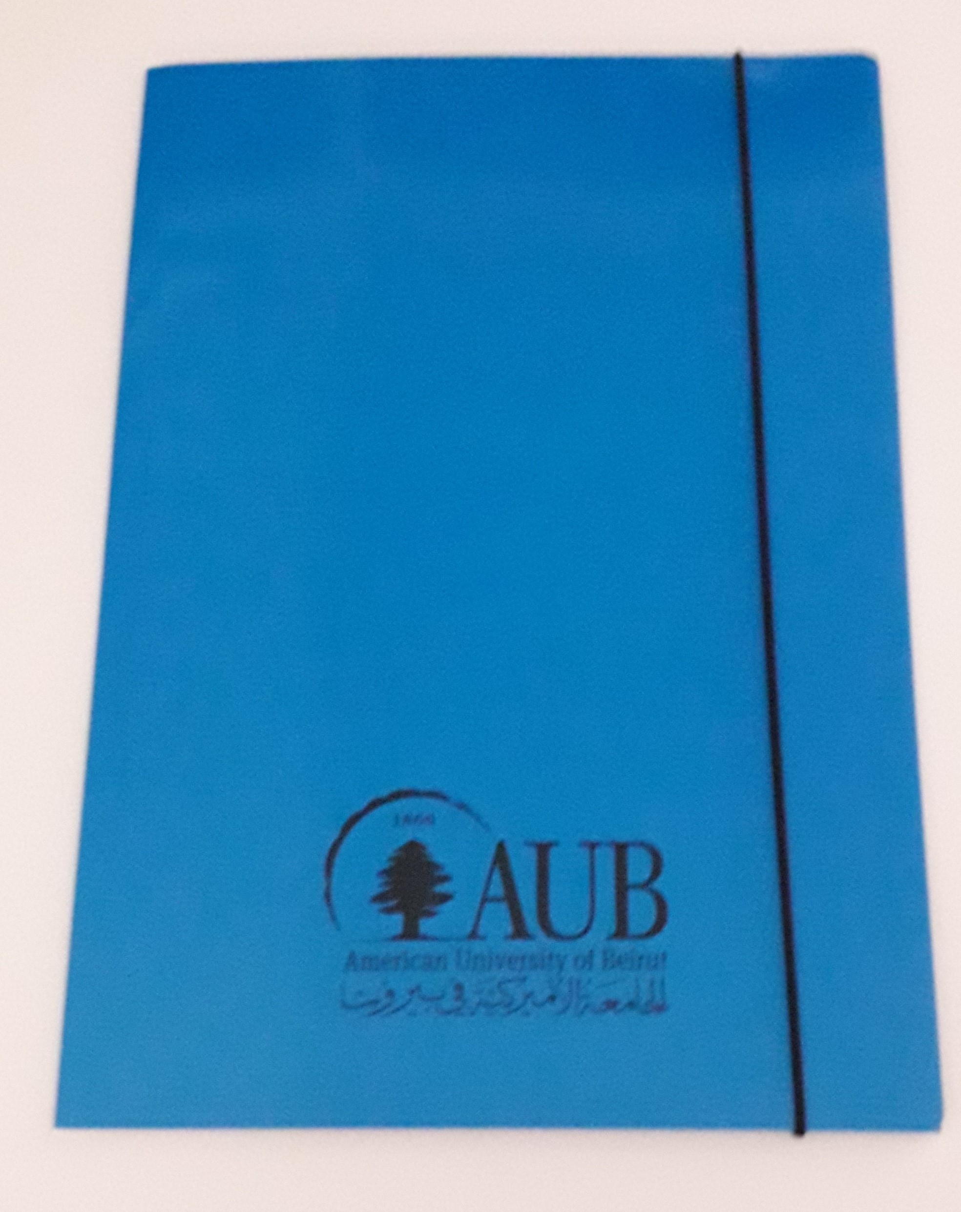 AUB Elastic Folder Blue 400g