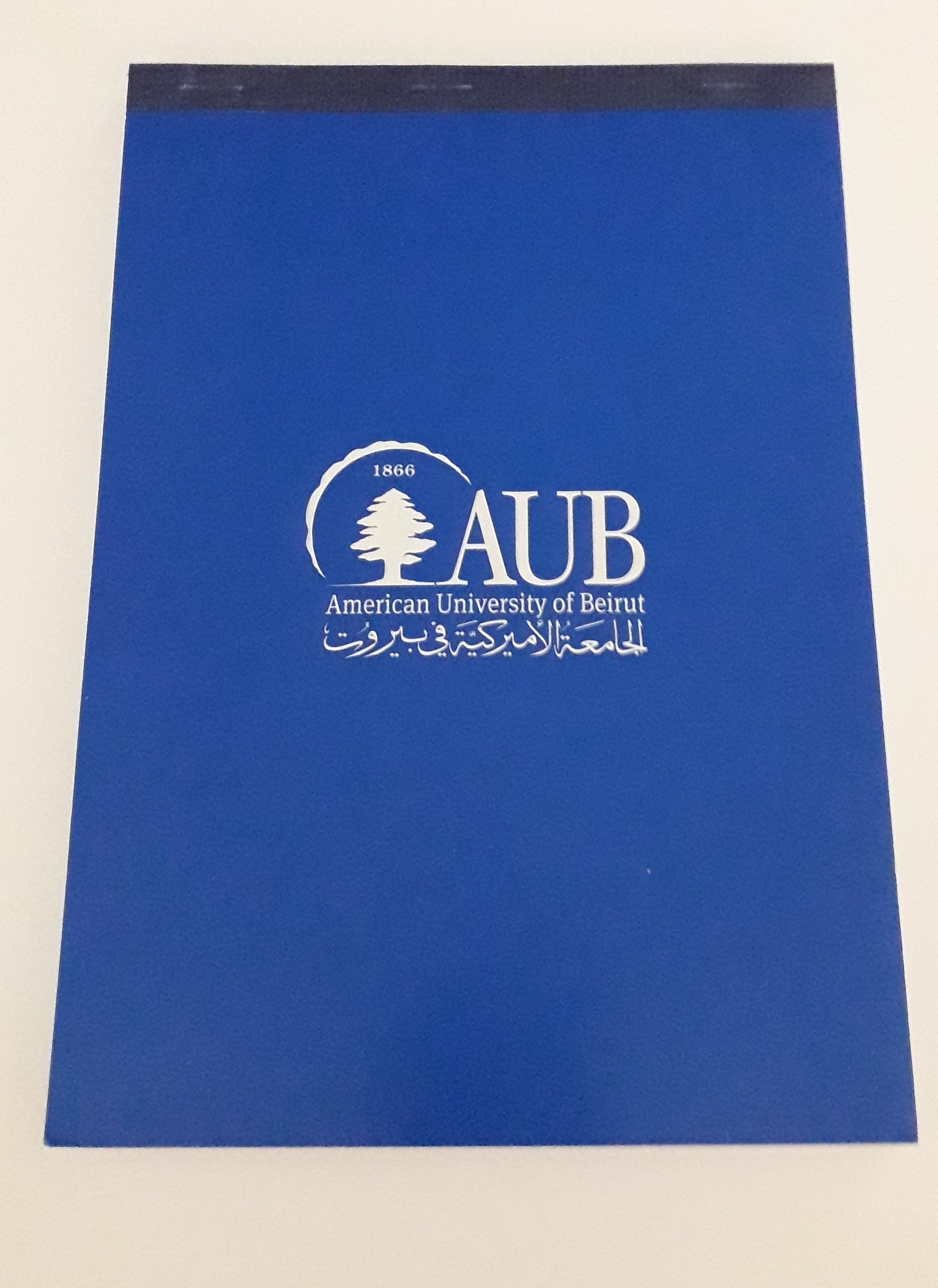 AUB Notebook | A5 | Blue Plain