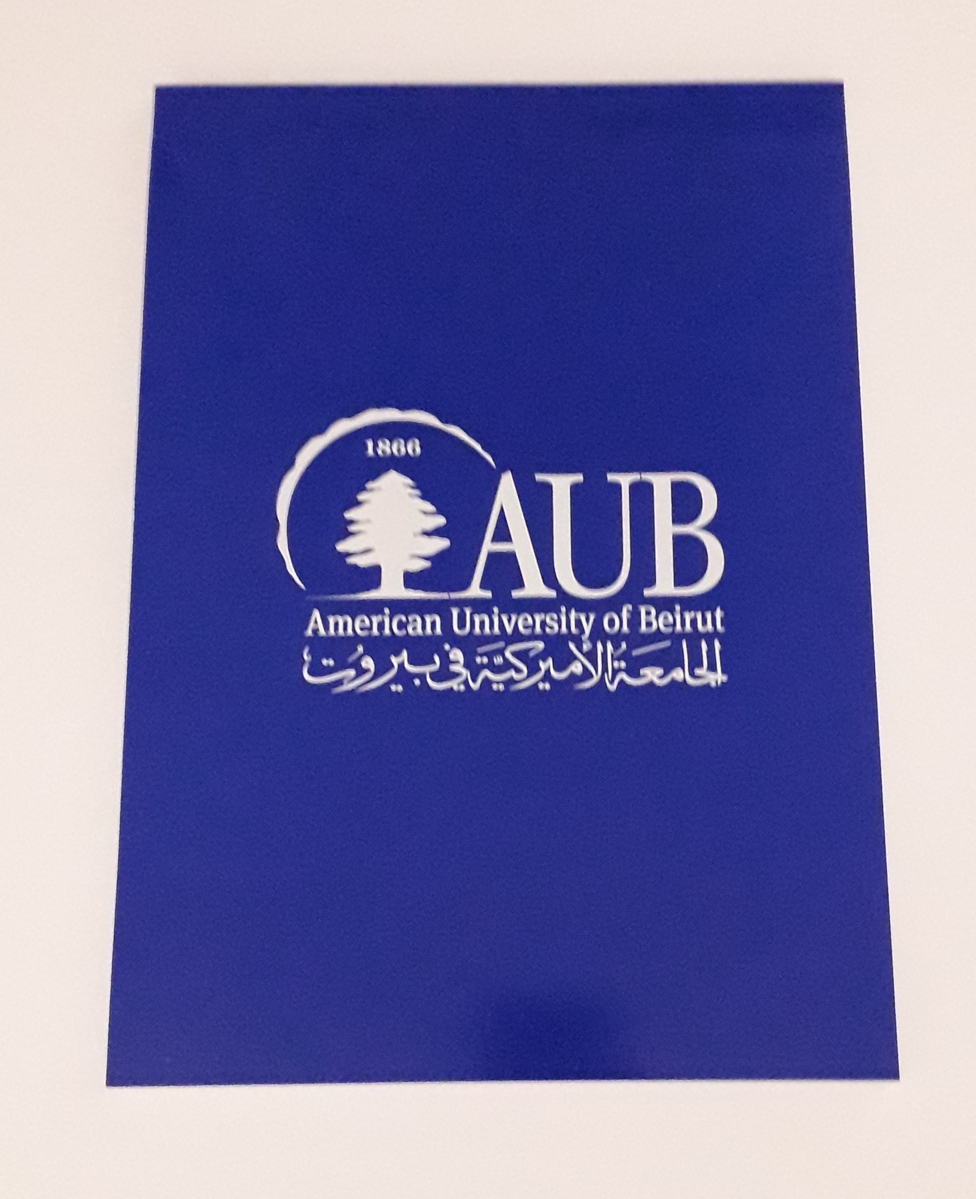 AUB Notepad A4 Lined 80SH 70G