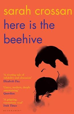 Here is the Beehive Shortlisted for Popular Fiction Book of the Year in the AN Post Irish Book Award