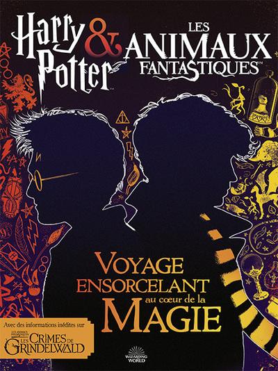 Harry Potter & Les Animaux Fantastiques : Voyage Ensorcelant Au Cour Des Films